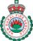 rfs-logo-main